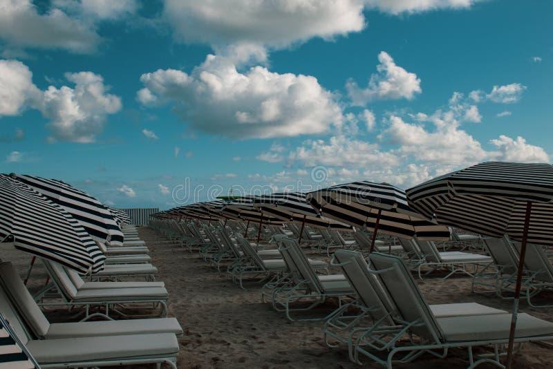 Po?udnie Pla?owy Miami: biali i b??kitni pasia?ci sunbeds na pla?y i parasole Pla?owy ?ycie, wakacje, wakacyjny nastr?j zdjęcie royalty free