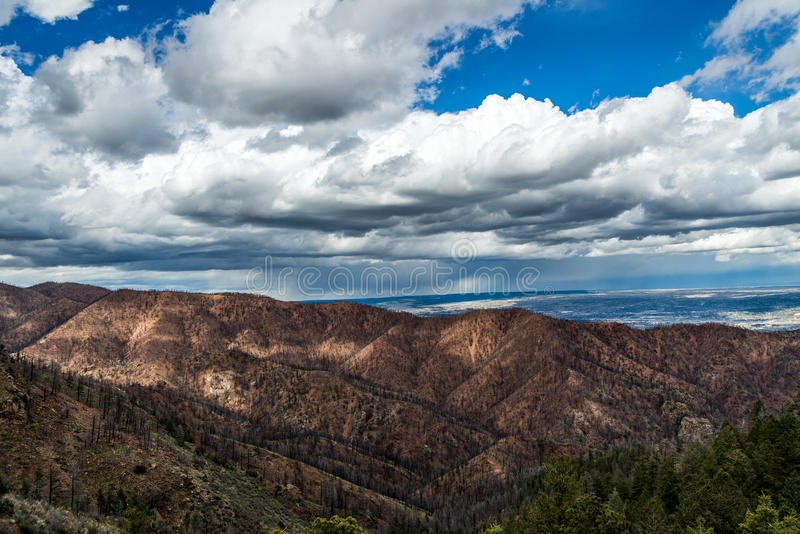 Po Waldo jaru pożaru lasu w Kolorado obrazy royalty free