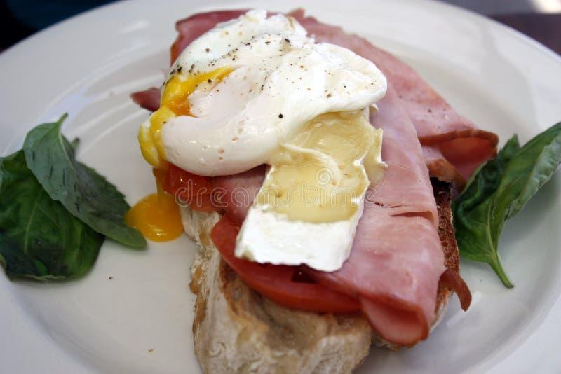 poached яичко завтрака стоковые изображения