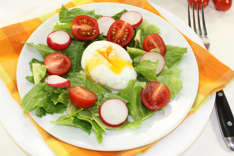 Download Poached egg stock photo. Image of green, radish, vegetables - 27318278