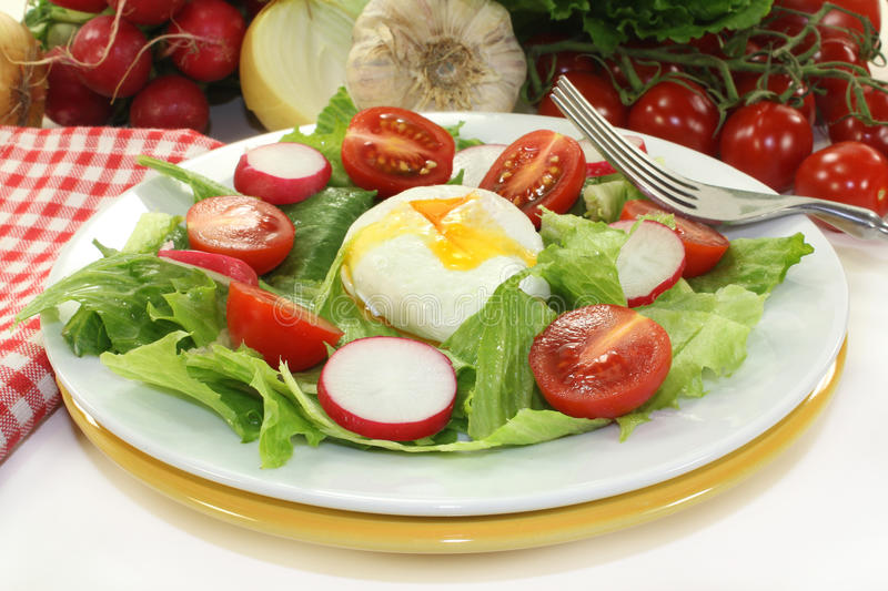 Download Poached egg stock photo. Image of lettuce, fresh, lost - 27332866