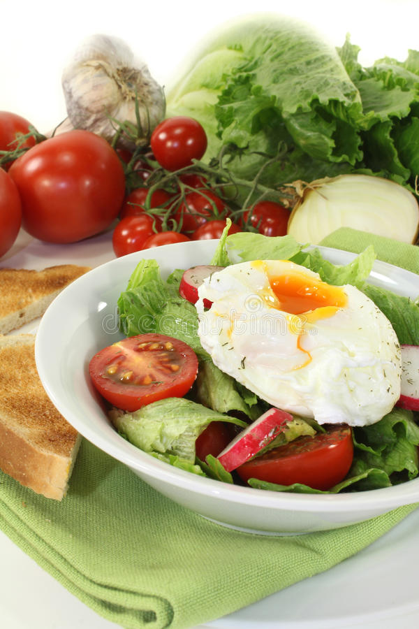 Download Poached egg stock photo. Image of garlic, lost, salad - 27366748