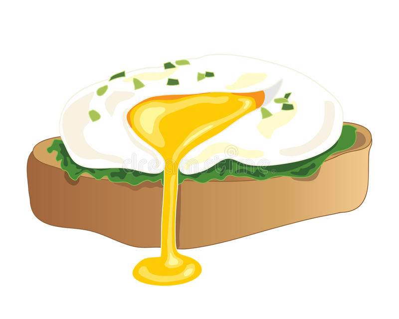 Poached egg. An illustration of a freshly poached egg with chive garnish on a piece of toast with a yellow yolk oozing on a white background royalty free illustration