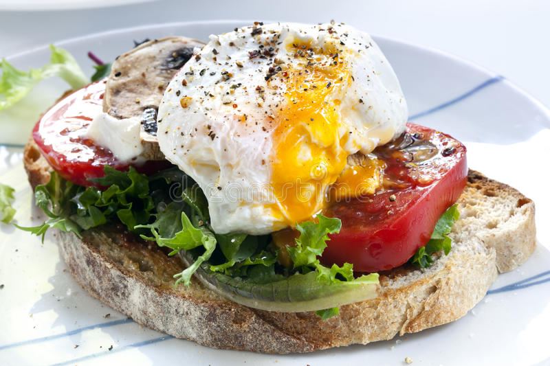 Download Poached Egg on Toast stock photo. Image of vegetables - 14855776