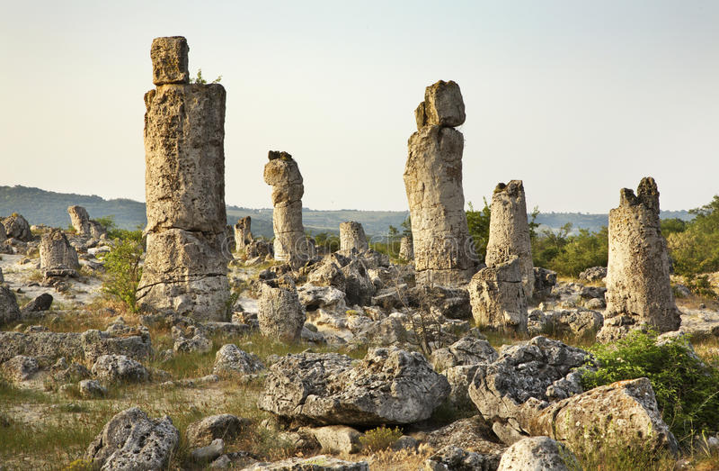 Pobiti Kamani (floresta de pedra) perto de Varna bulgária imagens de stock royalty free