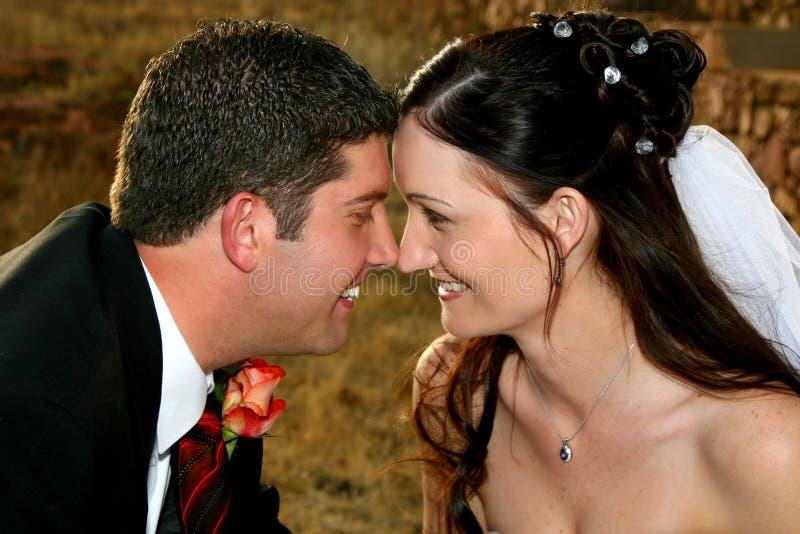 pocałunek nos zdjęcie royalty free