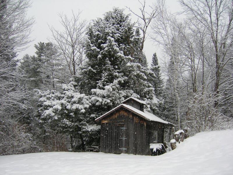 Poca casa en el bosque imagenes de archivo