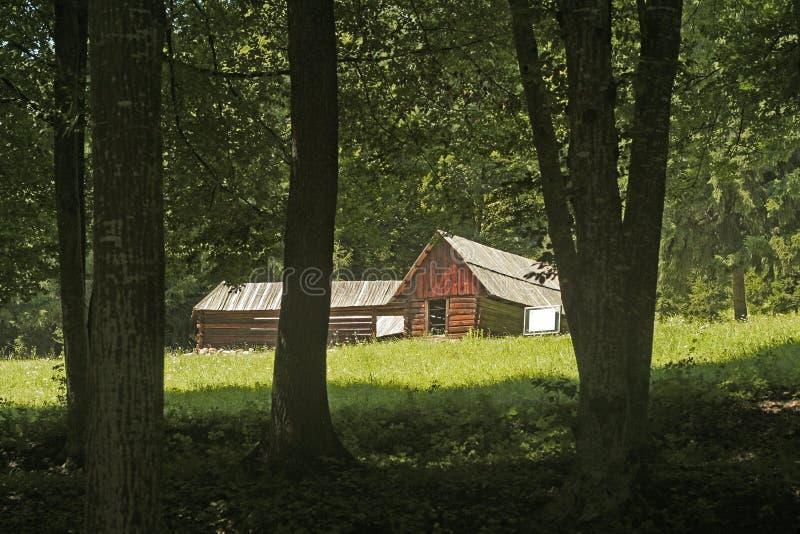 Poca casa en maderas imagen de archivo libre de regalías