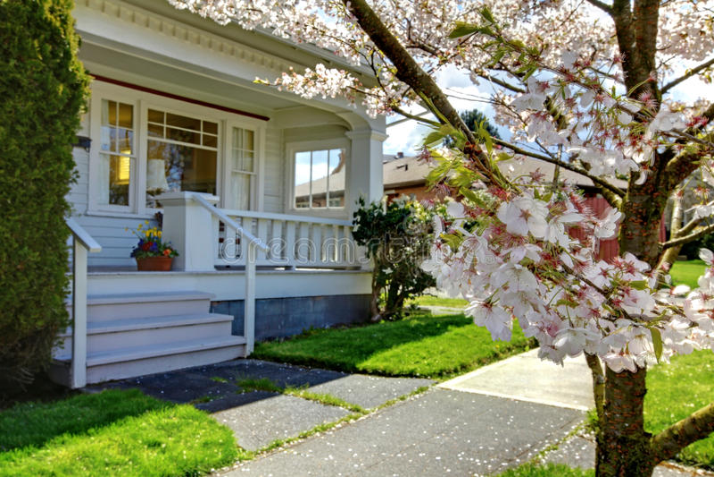 Poca casa linda vieja con un cerezo floreciente. imagen de archivo