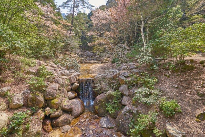 Poca cascada en el parque de Momijidani foto de archivo