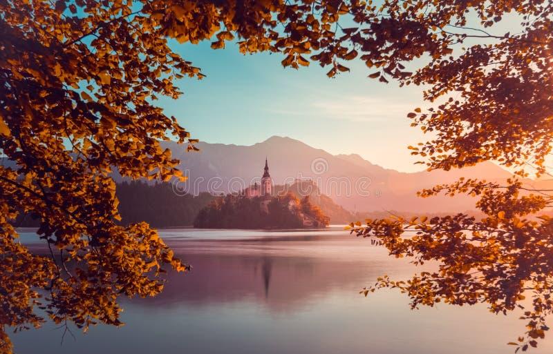 Poca isola con la chiesa cattolica in lago sanguinato, Slovenia all'Unione Sovietica immagini stock
