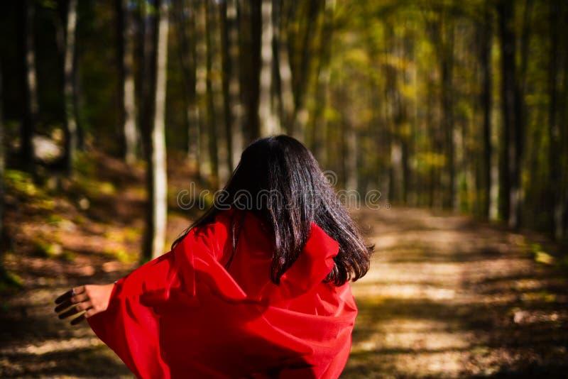 Poca ombra del lupo del briciolo del cappuccio di guida rosso fotografia stock