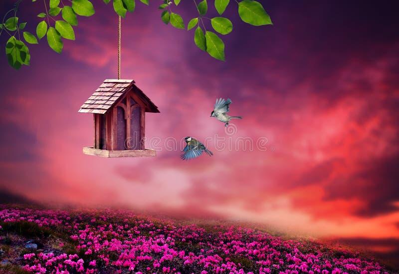 Poca pajarera en primavera con paisaje de la flor del flor fotos de archivo libres de regalías