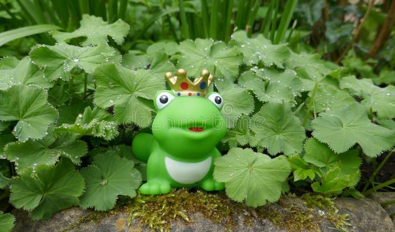 Poca rana verde del juguete con la corona En el jardín, ocultado entre las plantas verdes con las gotas de rocío foto de archivo libre de regalías