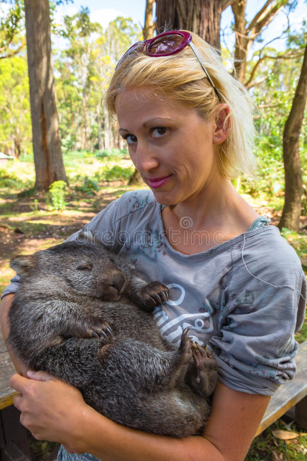 Poca tenencia del wombat imagen de archivo libre de regalías