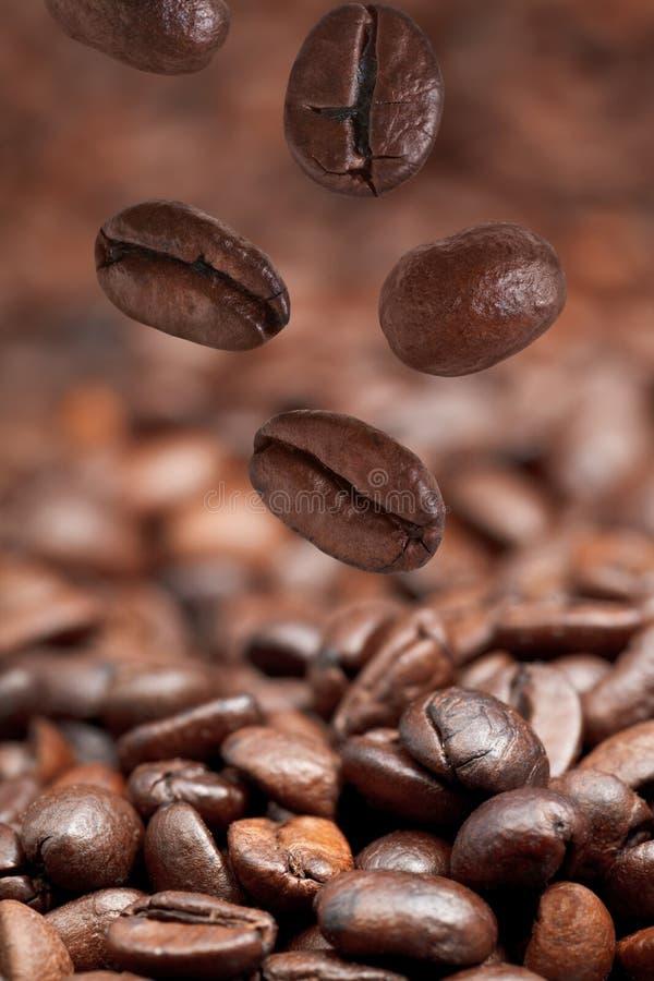 Pocas habas que caen y café asado oscuridad fotografía de archivo