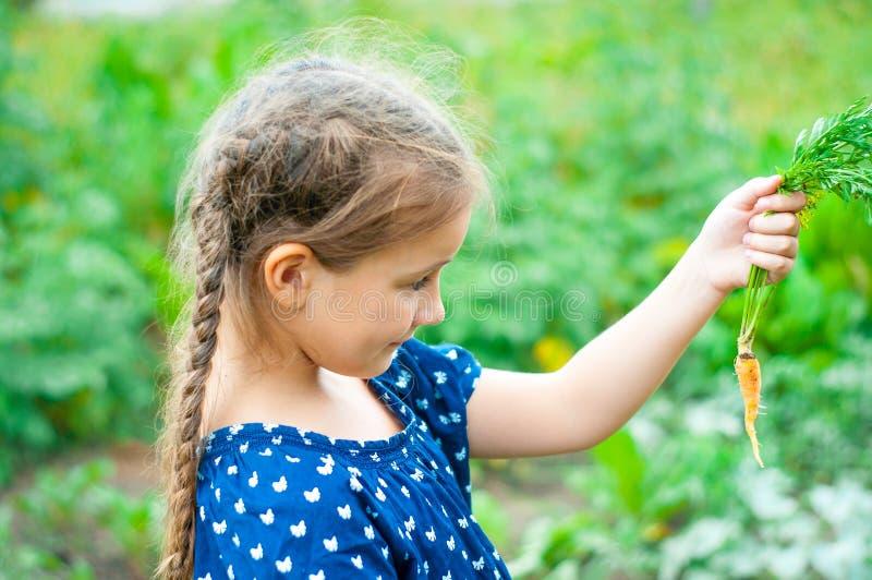 pocas sonrisas hermosas de la muchacha, escogen y comen zanahorias en el jardín foto de archivo