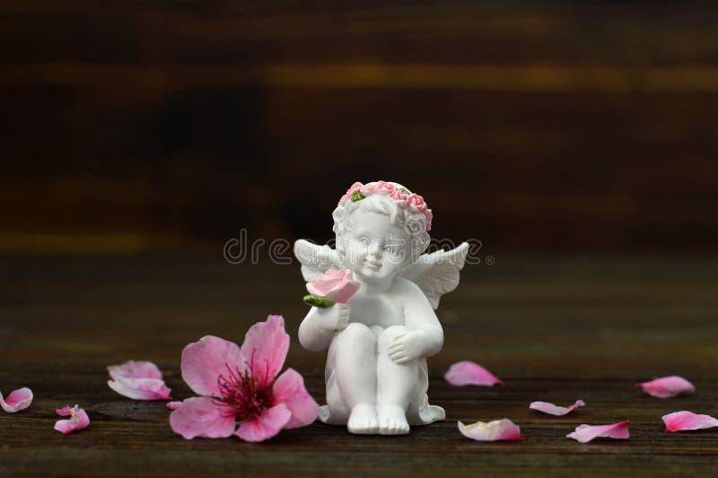 Pochi fiori della tenuta di angelo custode fotografia stock
