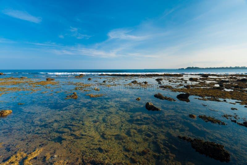 Pochi raggruppamenti di corallo di marea della roccia delle isole di Andaman fotografie stock libere da diritti
