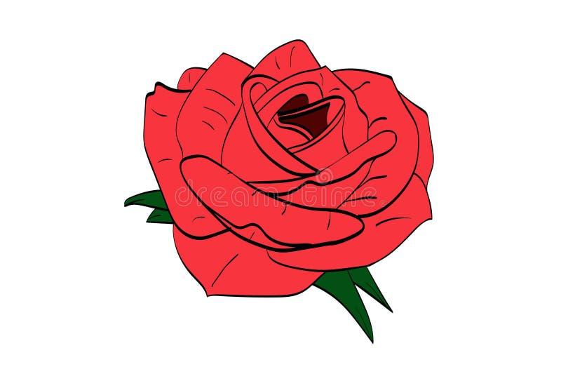 Pociągany ręcznie «róża z liśćmi wykonującymi w czerwieni z elementami zieleni liście ilustracja wektor