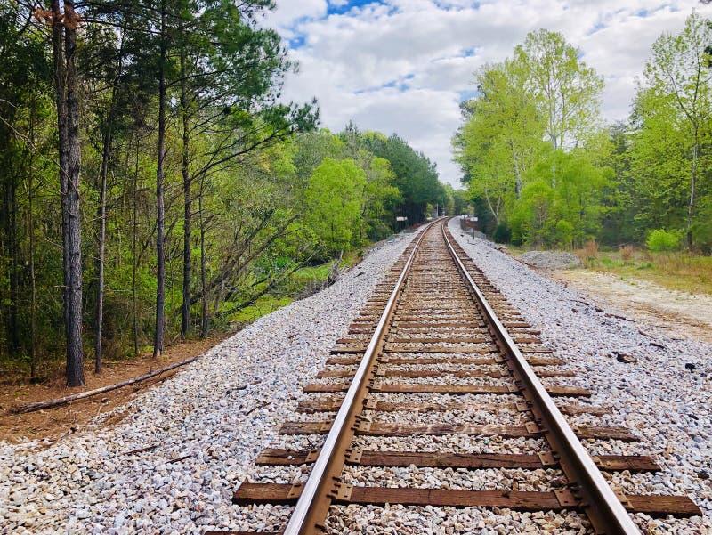 Pociągów ślada przez natury zdjęcie royalty free