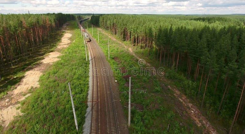 Pociąg towarowy przychodzi przy dwoistej linii koleją z elektrycznymi słupami w wiecznozielonym lesie, widok z lotu ptaka lokomot obraz royalty free