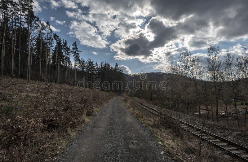 Pociąg tropi obok lasowej ścieżki w Sazava rzeki dolinie fotografia stock