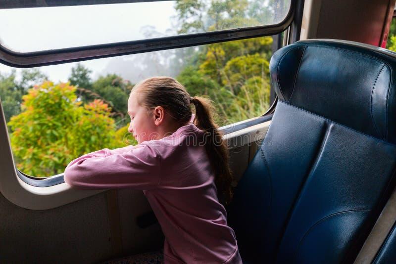 Pociąg w Sri Lanka zdjęcie stock