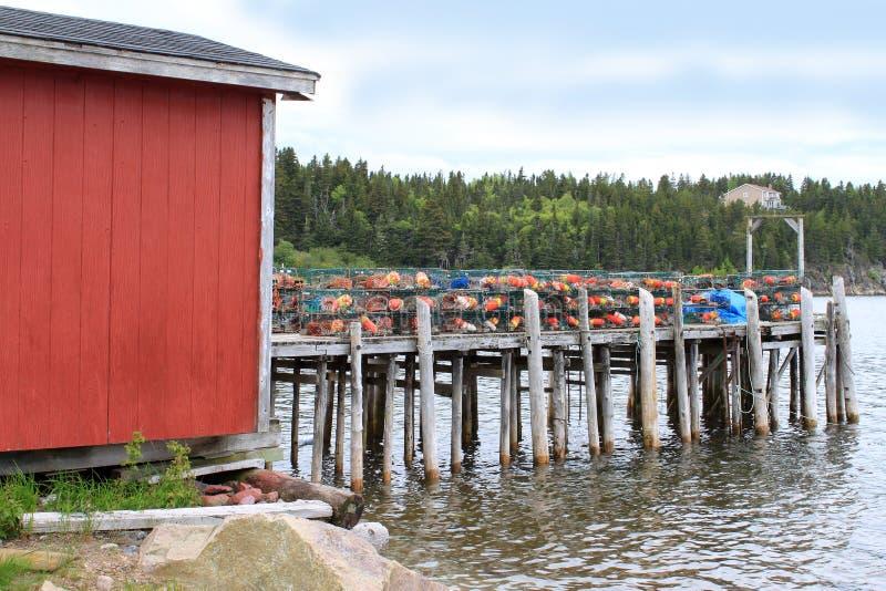pociesza homara mola oklepów drewnianych zdjęcie stock