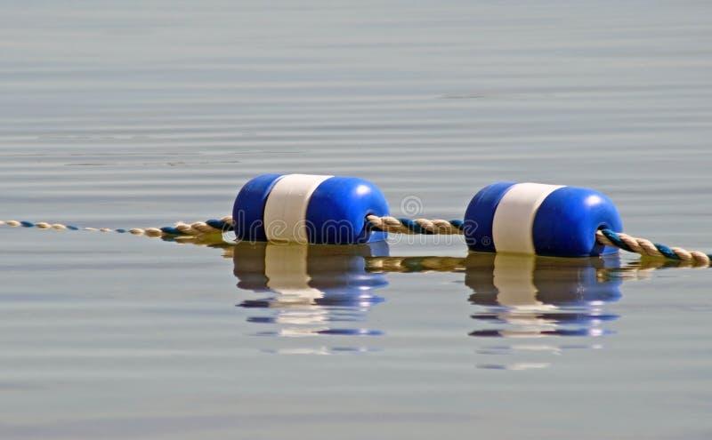 Pocieszam zawiązywał wpólnie i unoszący się na powierzchni woda obrazy royalty free