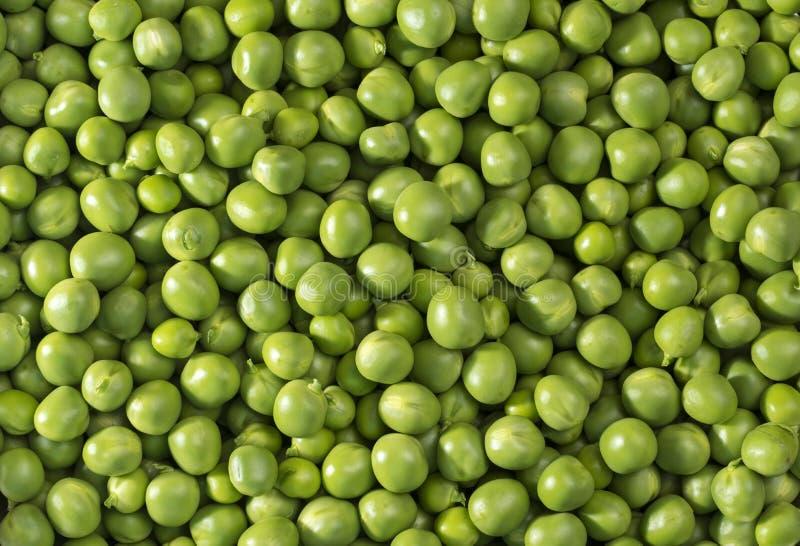 pociski tła zielonych grochu kapsuły białych zdjęcia stock