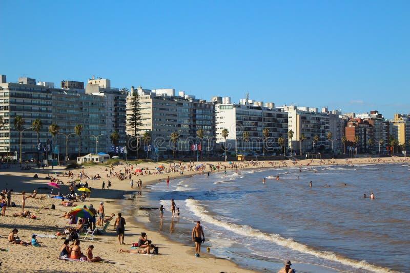 Pocitos strand i Montevideo, Uruguay på en härlig solig dag royaltyfri bild