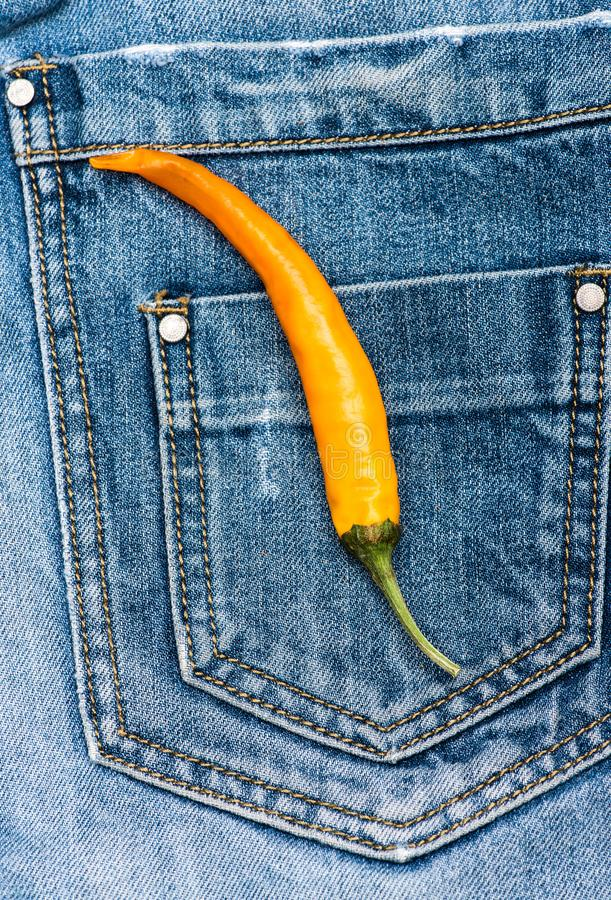 Pocket of jeans with yellow chilly pepper, denim background. Pepper on back pocket of blue jeans. Hot sensations concept. Piquant secret in pocket of pants royalty free stock photo