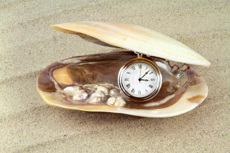 Pocket watch in a sea shell with real pearls royalty free stock image
