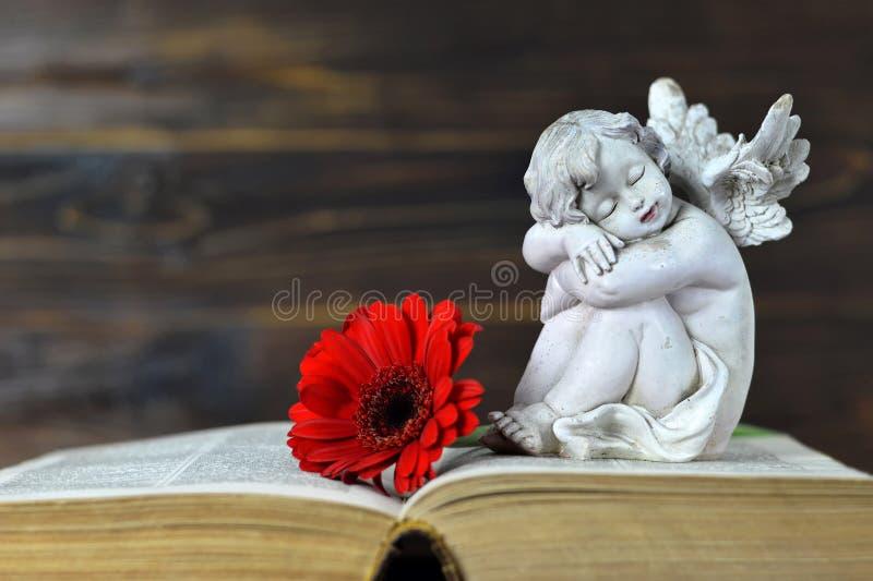 Poco angelo custode che dorme sul libro immagine stock