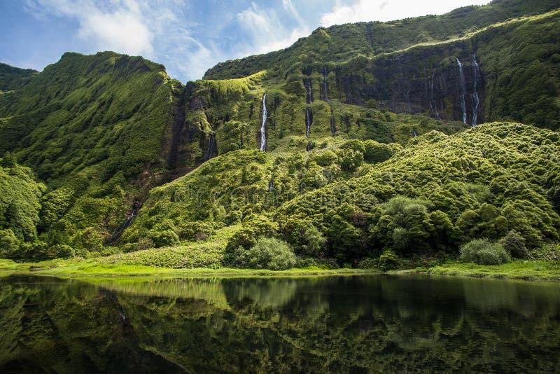 Poco a Dinamarca Ribeira faz Ferreiro, ilha de Flores, Açores, Portugal fotos de stock