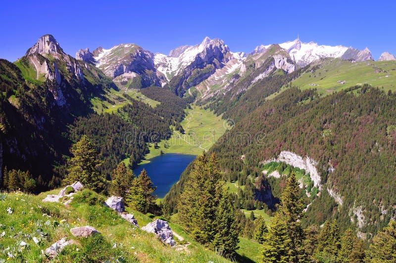 Poco lago azul en las montan@as suizas fotos de archivo