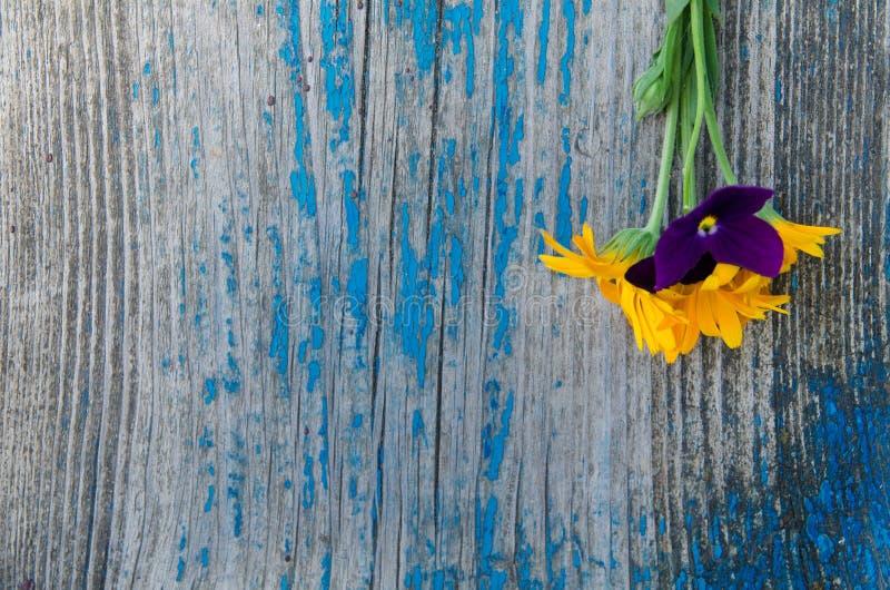 Poco mazzo dal lato su un vecchio bordo blu dipinto di legno con le crepe, struttura fotografie stock