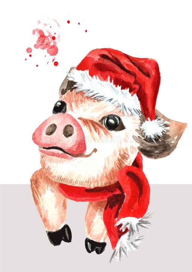 Poco mini cerdo de la taza de té divertida linda en el casquillo de la Navidad Ejemplo dibujado mano de la acuarela aislado en el stock de ilustración