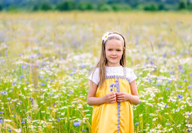 Poco muchacha bonita en el vestido ruso amarillo que escoge las flores en el campo de flores salvajes el día de verano imagenes de archivo