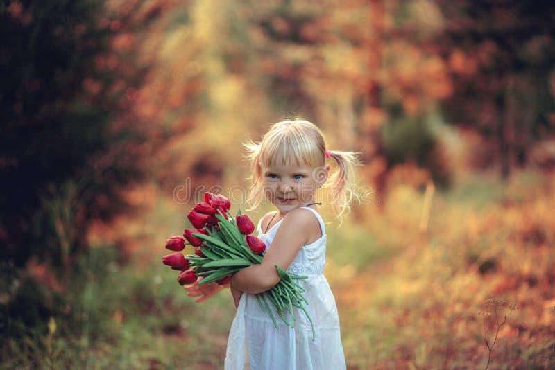 Poco muchacha hermosa que sonríe con las colas en su cabeza en el vestido blanco con un ramo de tulipanes imagen de archivo