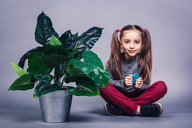 Poco muchacha linda en el papel de un jardinero con las tijeras houseplant de la poda del niño foto de archivo libre de regalías