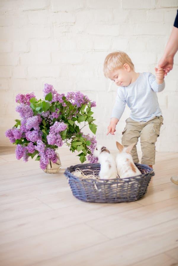 Poco muchacho lindo con el pelo rubio con los pequeños conejitos con las flores de la lila en una cesta de mimbre imagen de archivo