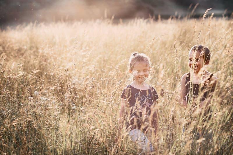 Poco niños sonrientes felices que juegan en una hierba alta fotografía de archivo libre de regalías