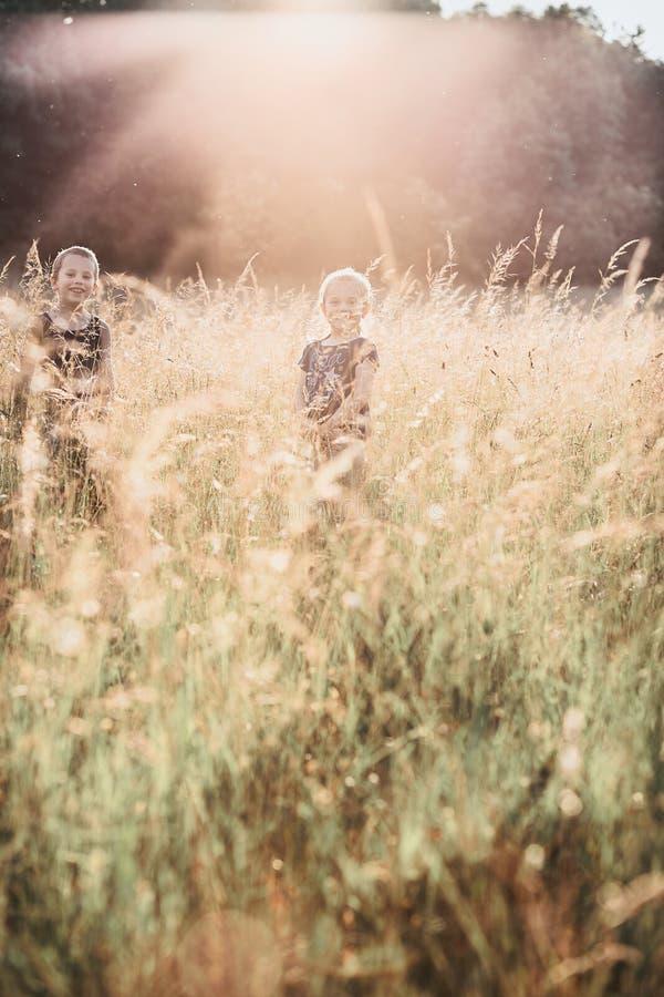 Poco niños sonrientes felices que juegan en una hierba alta foto de archivo