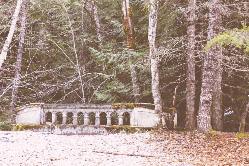 Poco puente de piedra al lado de un bosque grueso imagen de archivo