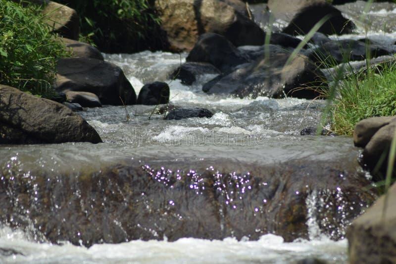 Poco río y muchos empiedran en origen del natur fotografía de archivo libre de regalías