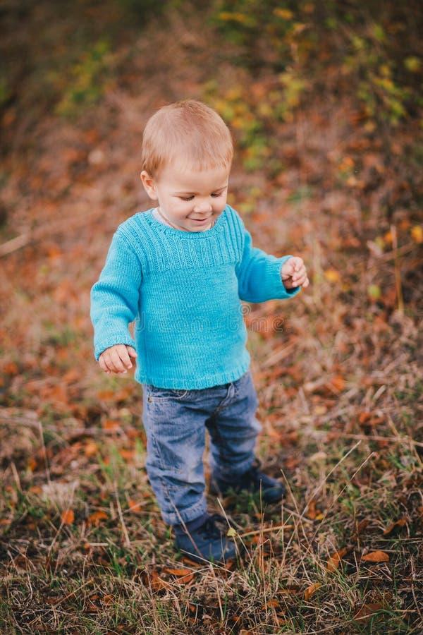 Poco ragazzo di modo in una foresta che indossa maglione e jeanse blu fotografia stock libera da diritti