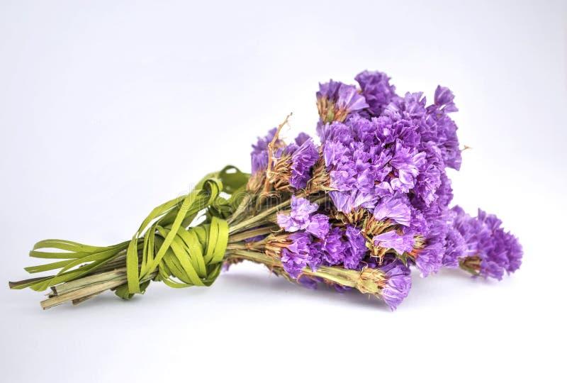 Poco ramo de flores violetas secas fotos de archivo