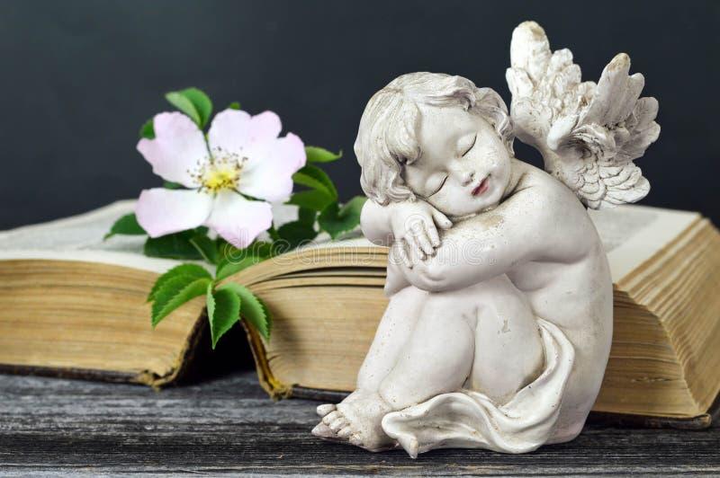 Poco sonno di angelo custode immagine stock libera da diritti